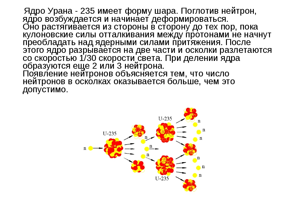 Ядро Урана - 235 имеет форму шара. Поглотив нейтрон, ядро возбуждается и нач...