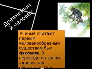 Древнейший человек Учёные считают первым человекообразным существом был дриоп