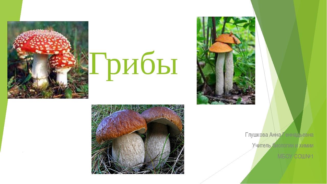 Грибы Глушкова Анна Геннадьевна Учитель биологии и химии МБОУ СОШ№1