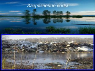 Загрязнение воды