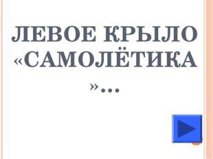 ЛЕВОЕ КРЫЛО «САМОЛЁТИКА»…