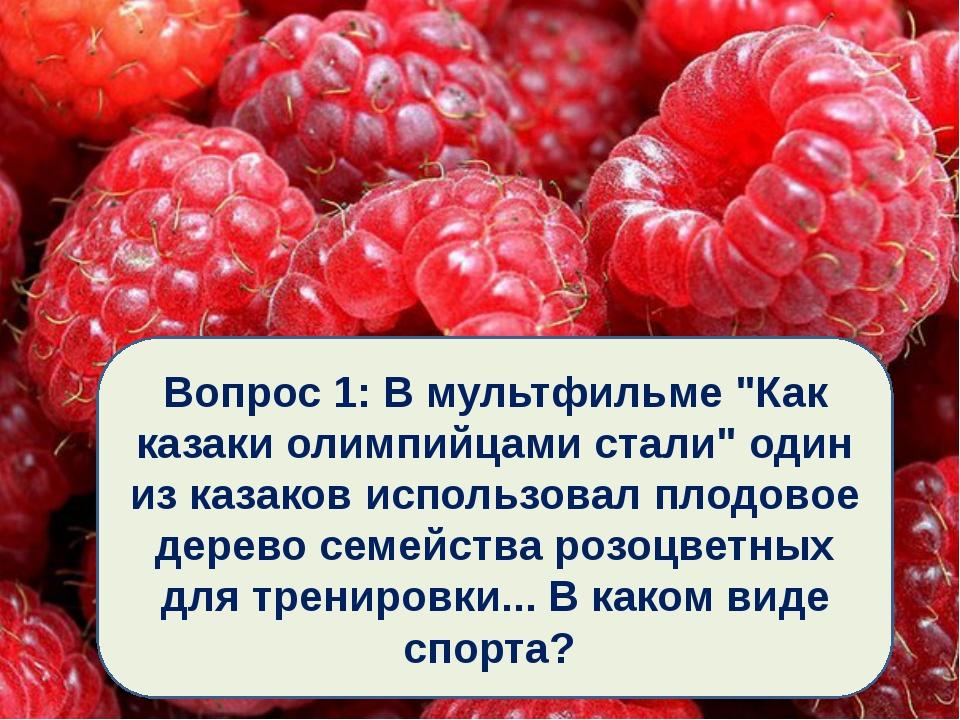"""Вопрос 1: В мультфильме """"Как казаки олимпийцами стали"""" один из казаков исполь..."""