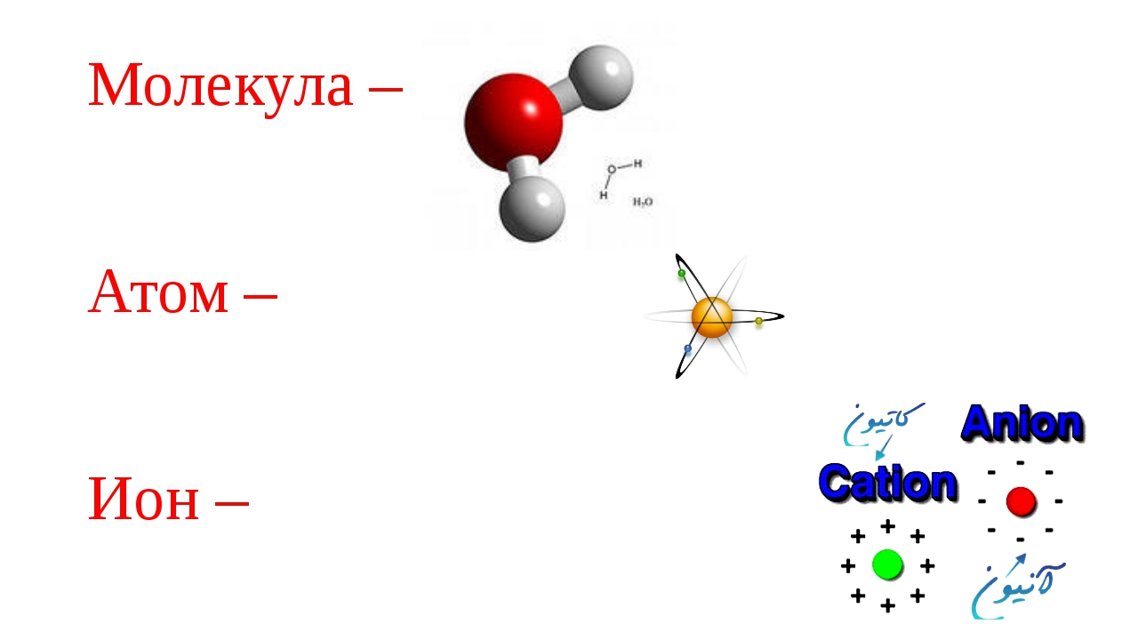 Молекула – Атом – Ион –