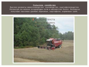 Сельское хозяйство. Высоко развиты животноводство, льноводство, картофелеводс