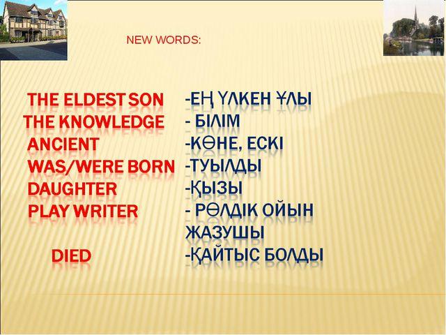 NEW WORDS: