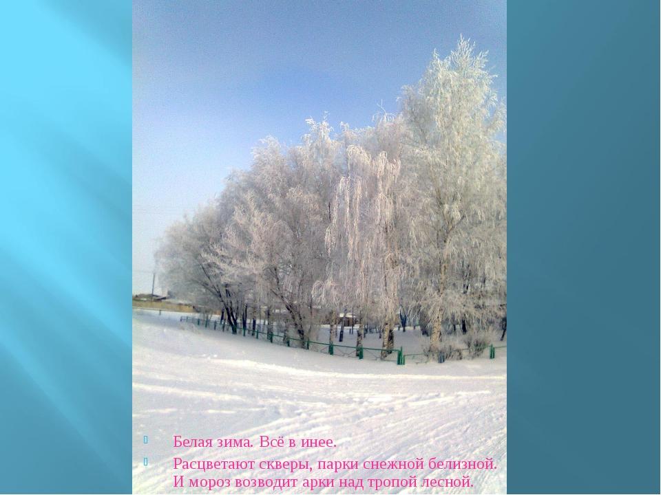 Белая зима. Всё в инее. Расцветают скверы, парки снежной белизной. И мороз во...