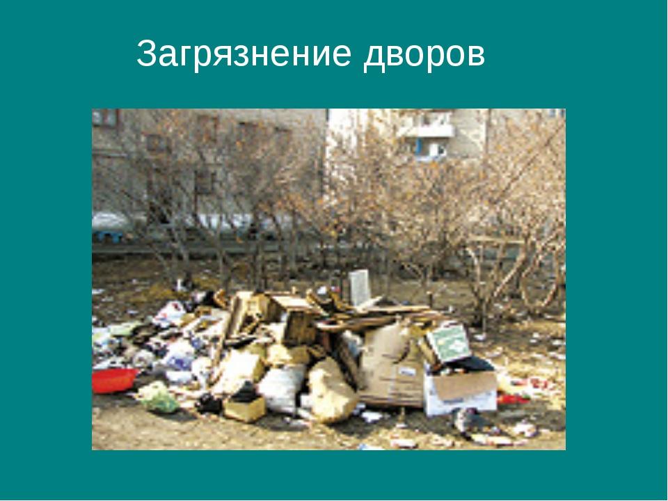Загрязнение дворов