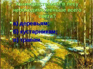 Каким растениям в лесу необходимо меньше всего света? а) деревьям; б) кустарн