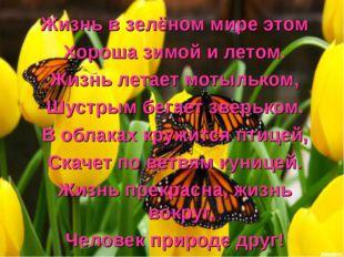 Жизнь в зелёном мире этом Хороша зимой и летом. Жизнь летает мотыльком, Шустр