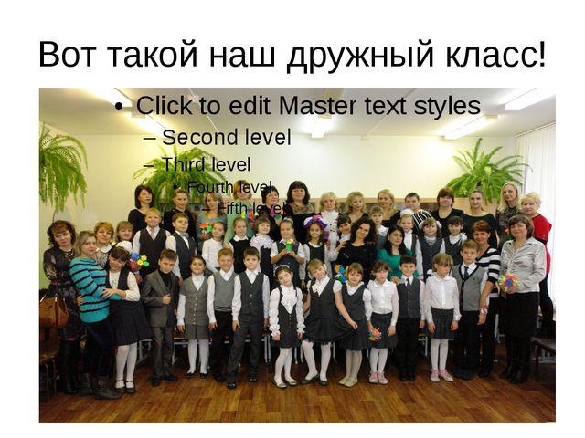 Вот такой наш дружный класс!