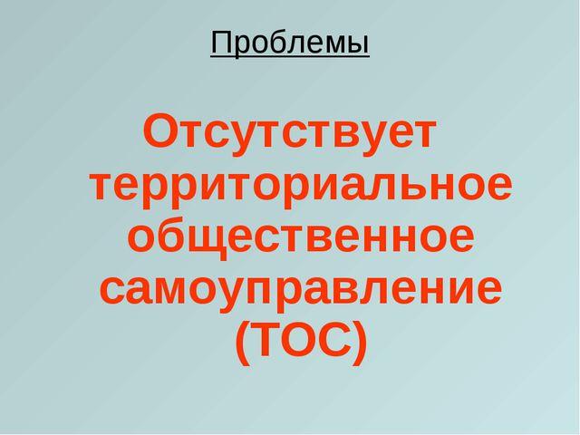 Проблемы Отсутствует территориальное общественное самоуправление (ТОС)