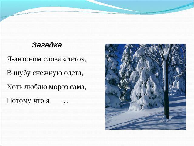 Загадка Я-антоним слова «лето», В шубу снежную одета, Хоть люблю мороз сама,...