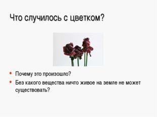 Что случилось с цветком? Почему это произошло? Без какого вещества ничто живо