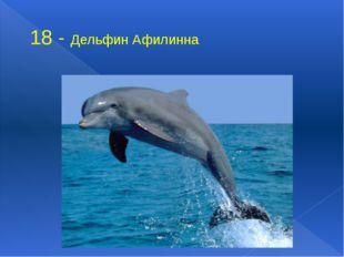 18 - Дельфин Афилинна