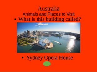 Australia Animals and Places to Visit What is the smallest bird in the world?
