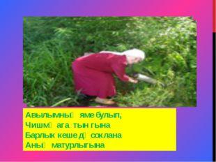 Авылымның яме булып, Чишмә ага тын гына Барлык кеше дә соклана Аның матурлыгына