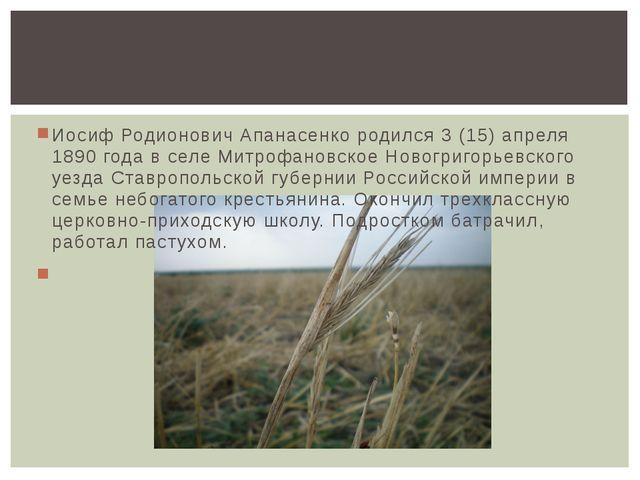 Иосиф Родионович Апанасенко родился 3 (15) апреля 1890 года в селе Митрофанов...