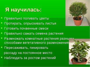 Я научилась: Правильно поливать цветы Протирать, опрыскивать листья Готовить