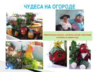 Замечательные игрушки, сделанные детьми и взрослыми поселились в зимнем саду!