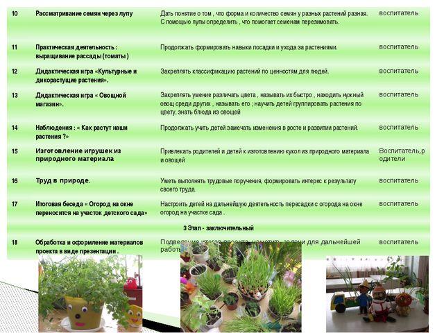 10 Рассматривание семян через лупу Дать понятие о том , что форма и количеств...