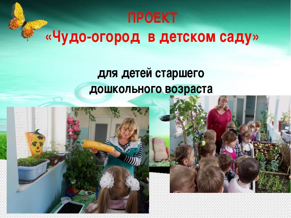 ПРОЕКТ «Чудо-огород в детском саду» для детей старшего дошкольного возраста