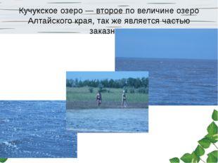 Кучукское озеро — второе по величине озеро Алтайского края, так же является ч
