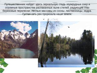 Путешественник найдет здесь зеркальную гладь изумрудных озер и огромные прост