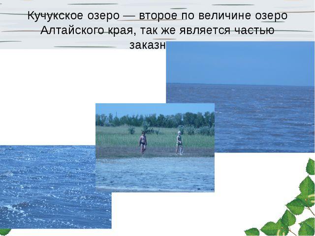 Кучукское озеро — второе по величине озеро Алтайского края, так же является ч...
