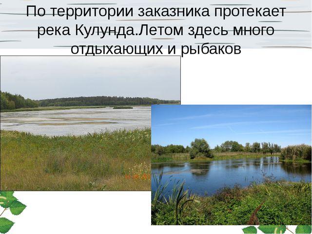 По территории заказника протекает река Кулунда.Летом здесь много отдыхающих и...
