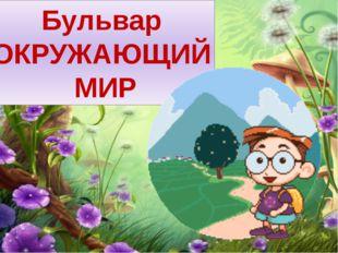 Бульвар ОКРУЖАЮЩИЙ МИР