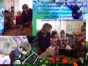 Дети знакомятся со свойством земли, правилами посадки растений и семенами. По