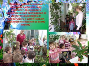 Природа, которая окружает малышей в детском саду, позволяет организовать сист