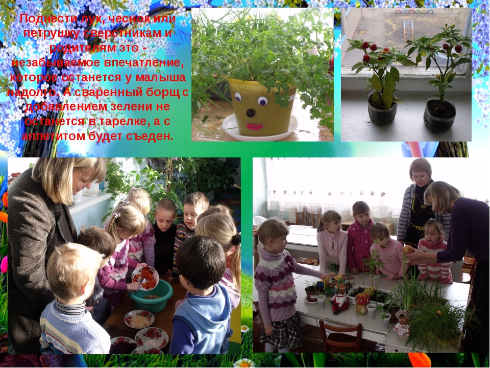 Поднести лук, чеснок или петрушку сверстникам и родителям это - незабываемое...