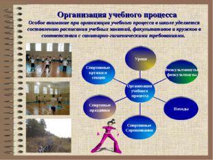 Организация учебного процесса Особое внимание при организации учебного процес