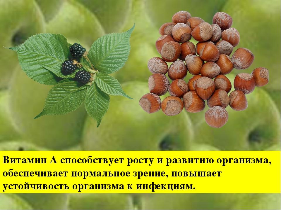 Витамин А способствует росту и развитию организма, обеспечивает нормальное зр...