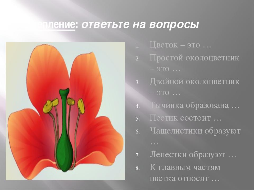 """Презентация по биологии на тему : """"Цветок"""" (6 класс)"""
