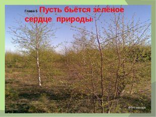 Глава 5 Пусть бьётся зелёное сердце природы! Фото автора