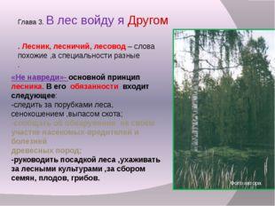 Глава 3. В лес войду я Другом . Лесник, лесничий, лесовод – слова похожие ,а