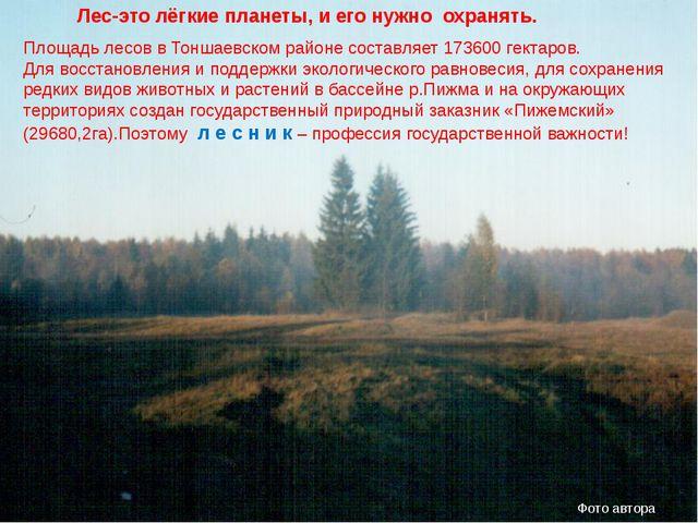 Площадь лесов в Тоншаевском районе составляет 173600 гектаров. Для восстановл...