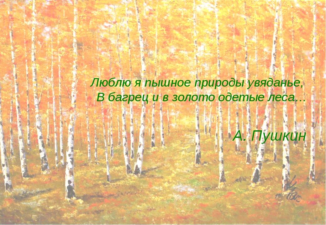 Люблю я пышное природы увяданье, В багрец и в золото одетые леса… А. Пушкин