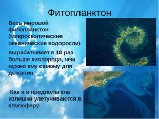 Фитопланктон Весь мировой фитопланктон (микроскопические океанические водорос