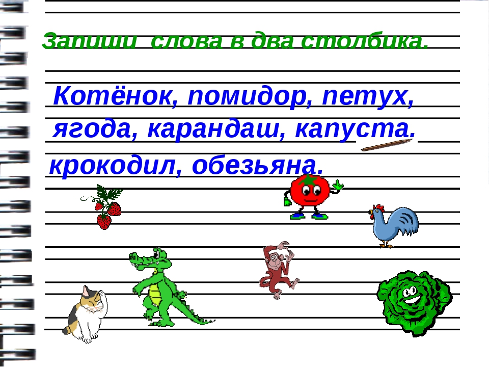 Котёнок, помидор, петух, ягода, карандаш, капуста, крокодил, обезьяна. Запиш...