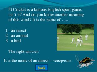 The right answer: an insect an animal a bird It is the name of an insect – «с