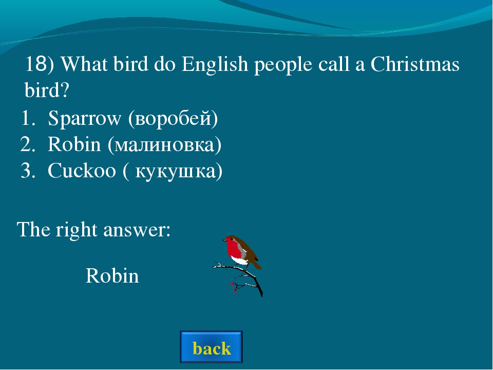 The right answer: 18) What bird do English people call a Christmas bird? Spar...