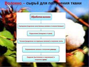 Волокно – сырьё для получения ткани