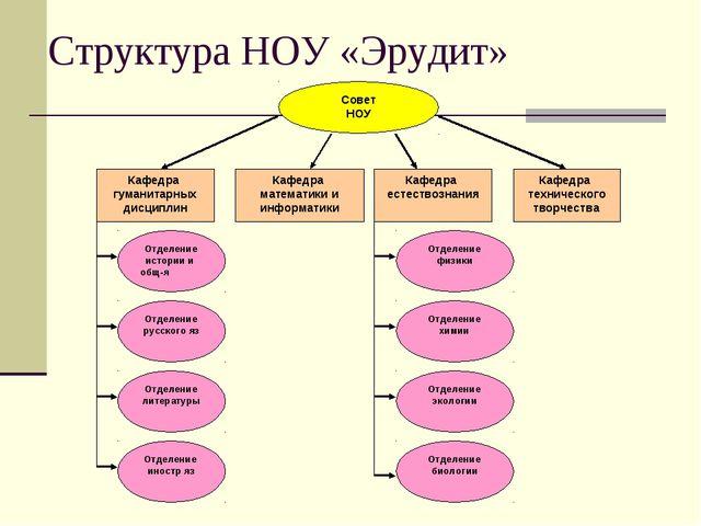 Структура НОУ «Эрудит»