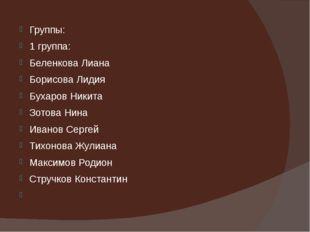 Группы: 1 группа: Беленкова Лиана Борисова Лидия Бухаров Никита Зотова Нина И