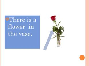 There is a flower in the vase.