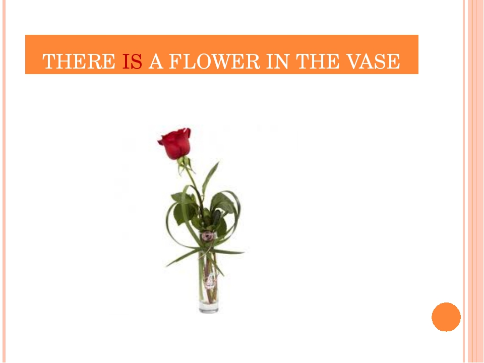 THERE IS A FLOWER IN THE VASE