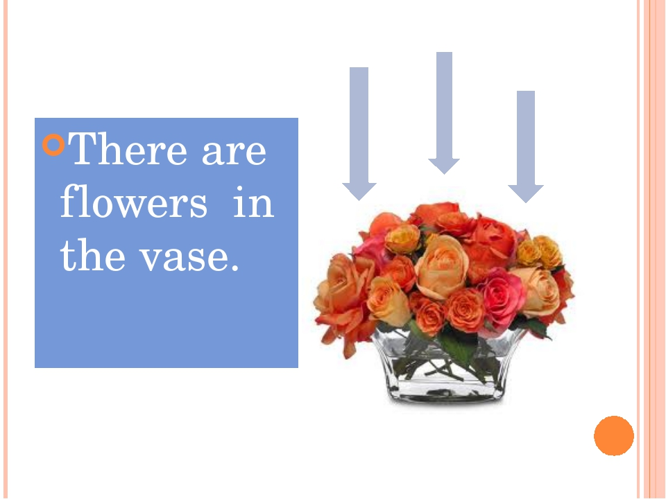 There are flowers in the vase.